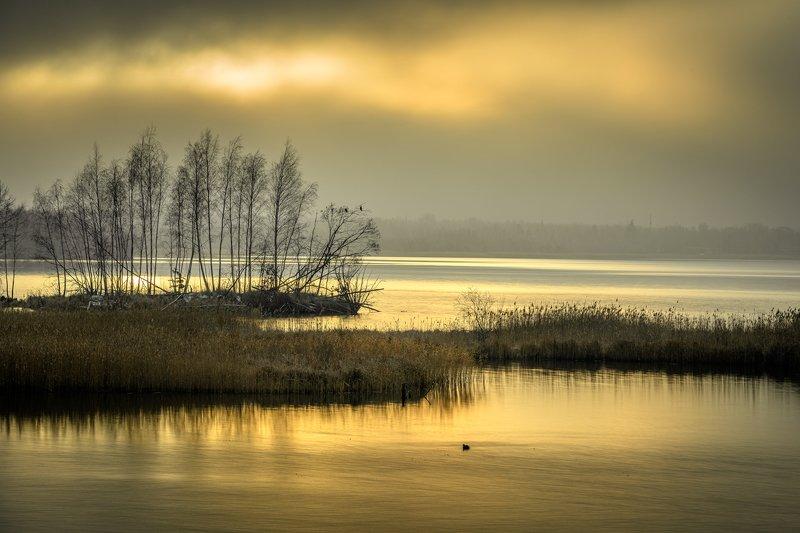 sunrise, pogoria, landscape, nature, lake Pogoria 4, Dąbrowa Górniczaphoto preview