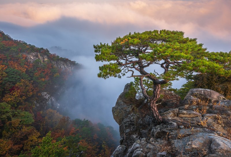 mountains,peak,hiking,fog,clouds,autumn Shadows and fogphoto preview