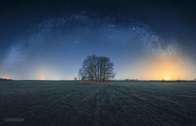 млечный путь, деревья, поле, ночь Под звездамиphoto preview