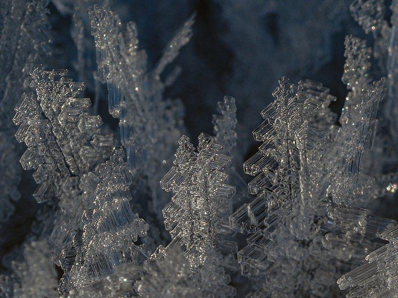 кристаллы инеяphoto preview