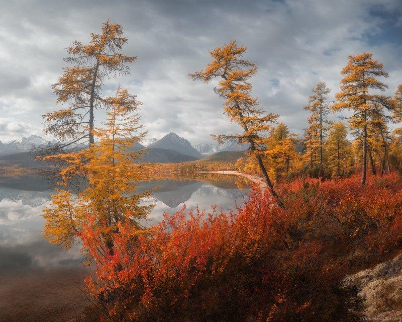 Колыма, озеро Джека Лондона Осень косы Биологовphoto preview