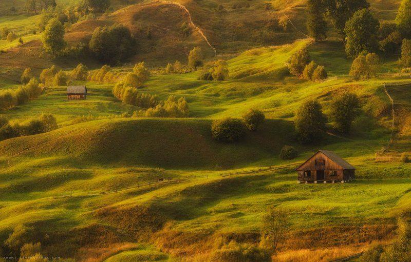 Карпаты, Пейзаж ЛЕТО В КАРПАТАХphoto preview