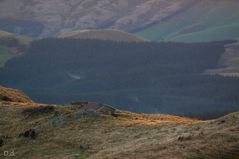new zealand, hut, highlands, hill, dusk, Packhorse hutphoto preview