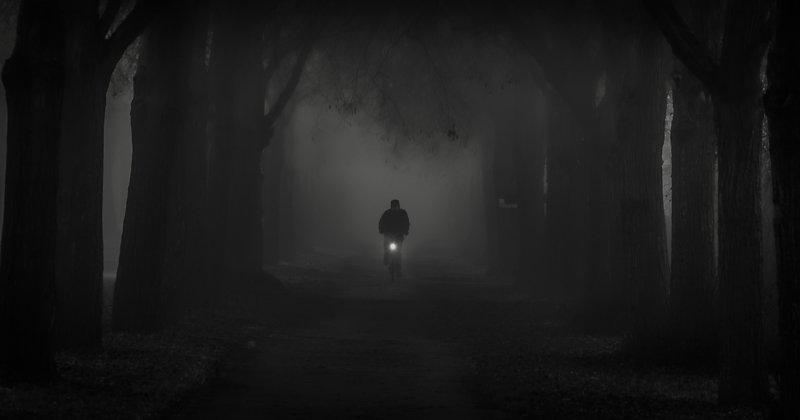 Noc, Mgła, Drzewa, Rowerzysta, Strach, Czas, Droga, Jesień To make it before midnightphoto preview