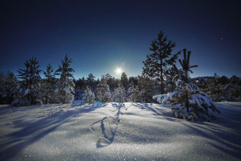 озеро, горы, лес, природа, закат, рассвет, красота, приключения, путешествие, облака, урал Лунная дорожка блистает серебромphoto preview