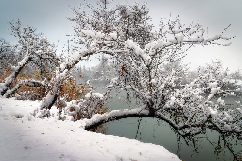 Силуэты в снегуphoto preview