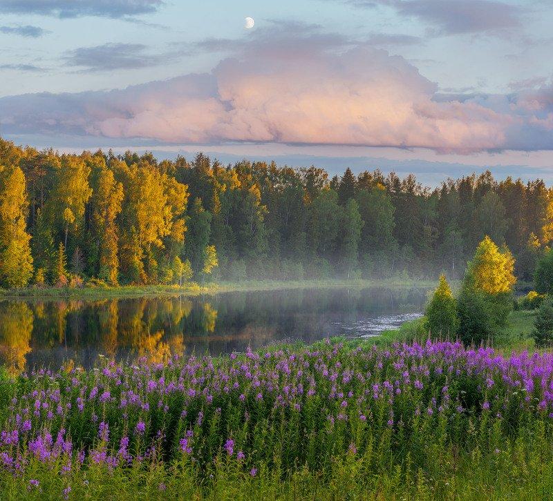 Фототуры с Владимиром Рябковым, #topnature #russpasibo #magic_shots #lovelyRussia #sunset_vision #exclusive_sky  #exclusive_shots #loves_russia2 #photoarena_nature #nature_sultans #nature_perfection #rsa_sky #rsa_sunset #photorussia #rsa_naturepics #sunse Вечер на озере.photo preview