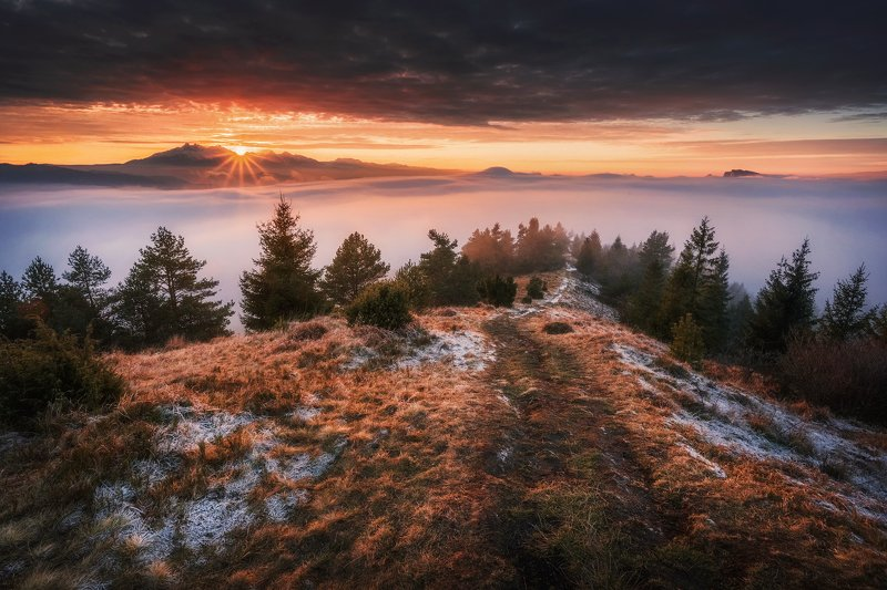 mountains, pieniny, slovakia, sunset, sun, light, colors, fog, mist, forest, wood, trees, landscape, горы, пейзаж, закат Last rays of the sunphoto preview