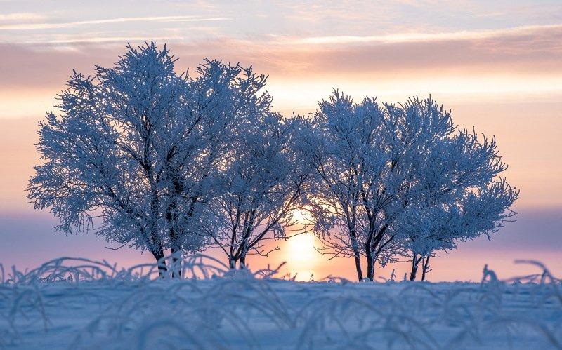 зима Восходphoto preview