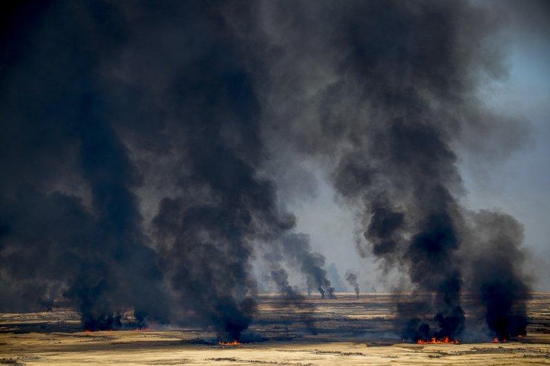 казахстан, юго-восток, река, или, река или, дельта, пожар, пожар в степи, Пожар в степиphoto preview