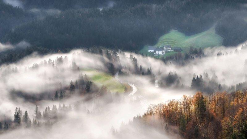 словения, slovenia, туманы словении, slovenia landscape, slovenia landscape photography Вьюга...photo preview