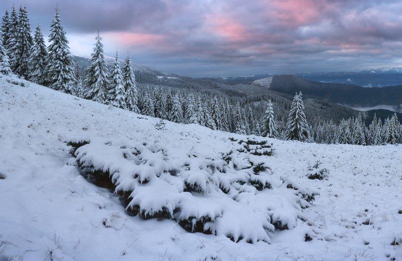 carpathians, morning, snow, panorama, pine trees, mountains, clouds, fog, winter, landscape, утро, карпаты, снег, горы, зима, снегопад, черногора, украина, панорама, путешествие, ели, облака, рассвет, туман, пейзаж, ukraine .. после снегопада ..photo preview