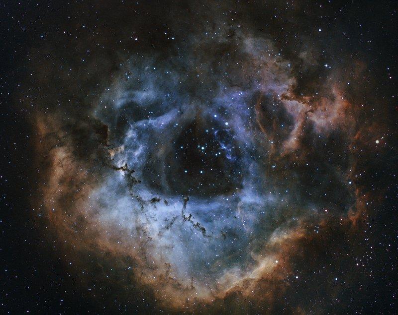 astrophoto, night, deep sky, narrowband Rosette Nebulaphoto preview