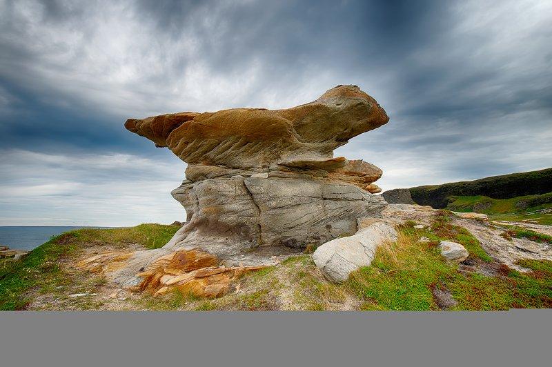 камень, рыжий, рыбачий, полуостров Берег рыжих камней на полуострове Рыбачий (Мурманская область)photo preview