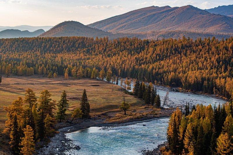 алтай. осень. горы. Алтайские просторы.photo preview