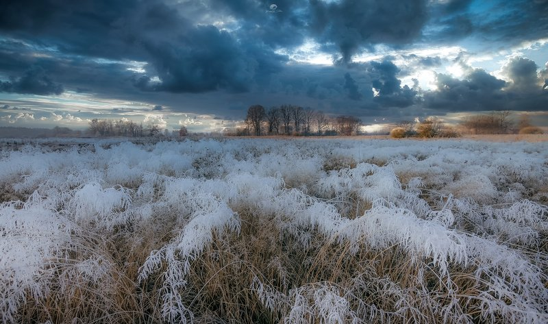 Frost, reflection, sky, frost, landscape, december, nikon, sunrise, nature, forest, tree, clouds Painted with frostphoto preview