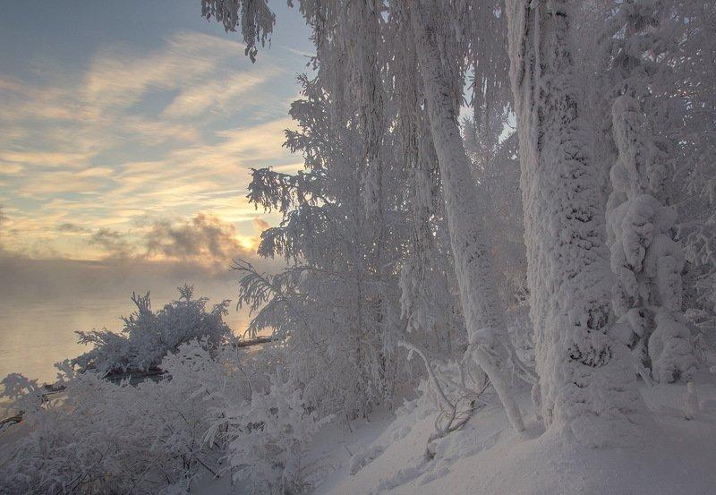 Морозным утромphoto preview