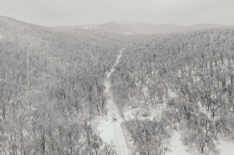 зима, снег, лес, одиночество, автомобиль, авто, приморье, владивосток, природа Тет-а-тетphoto preview