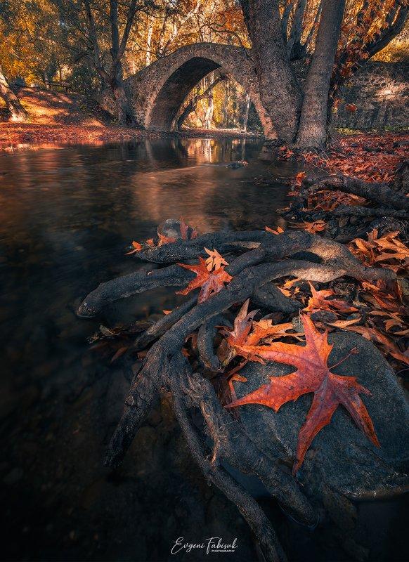 Tzelefos Bridgephoto preview