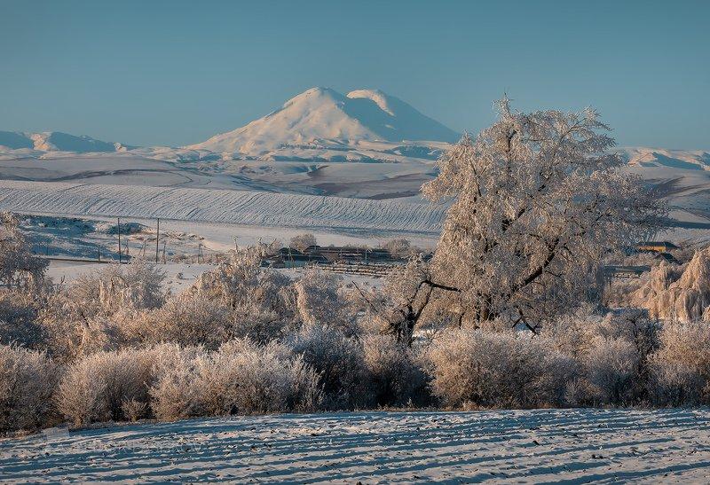 гора, кавказ, кавказские горы, эльбрус, главный кавказский хребет, иней, снег, зима, дерево, поле, поля, Утро 1-го январяphoto preview