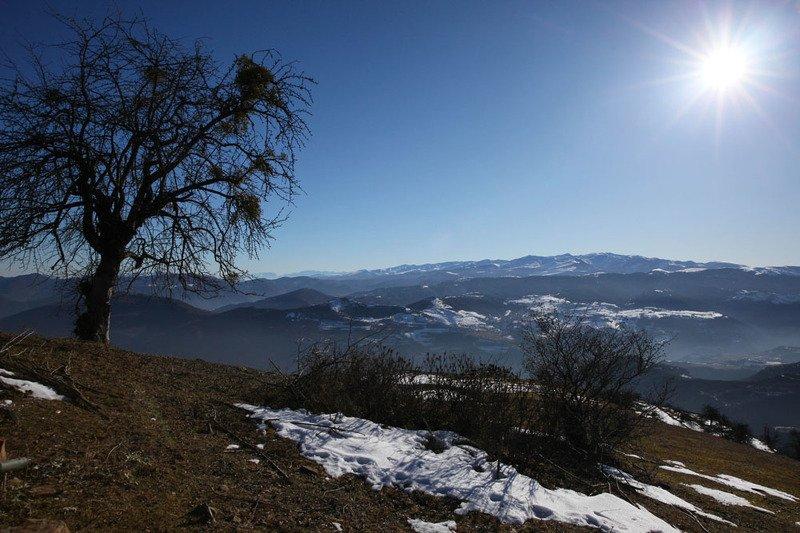 горы,вершины,пейзаж,небо,деревья,дагестан,природа Вокруг одного дерево..photo preview