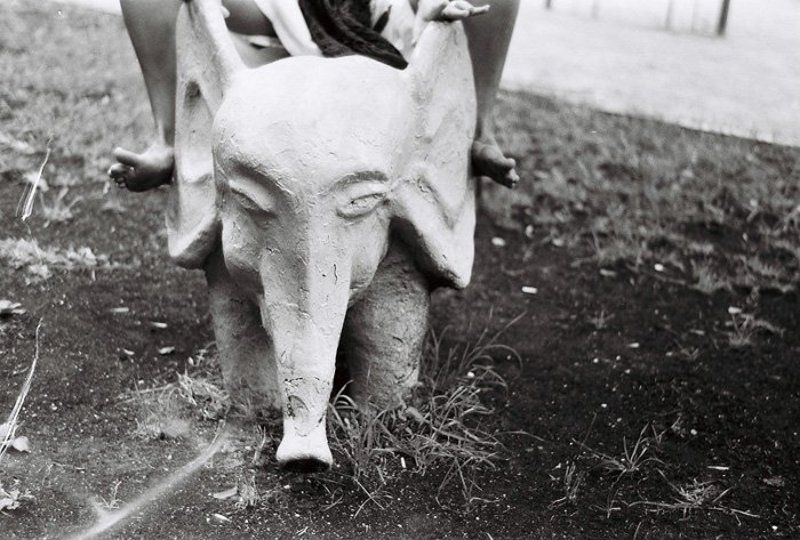 слон, сердце, индия, зоркий4к, 35мм В Слоне - большое Сердцеphoto preview