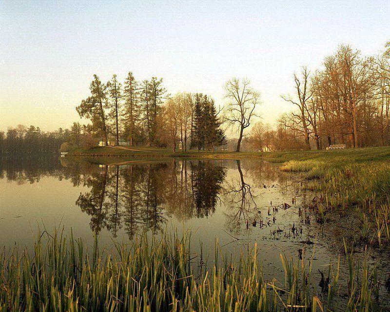 екатерининский, парк, дворец, расвет, пять, утра, город, пушкин, пейзаж, природа, весенний Веснаphoto preview