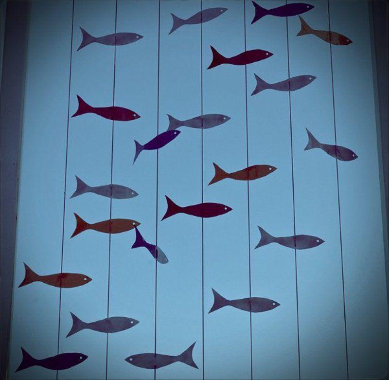 6х6, море, рыбы, сны photo preview