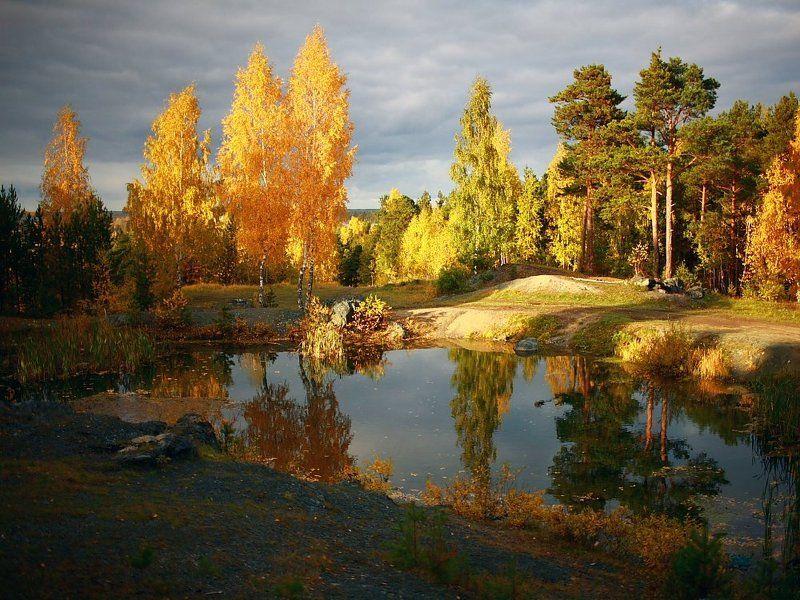 осень, пейзаж Золотаяphoto preview