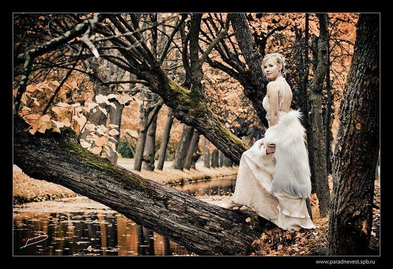 парад, невест, санкт-петербург, 2008 * * * *photo preview