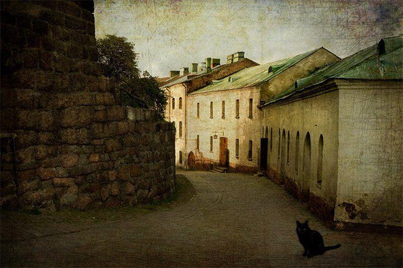 Кот на старой улице...photo preview