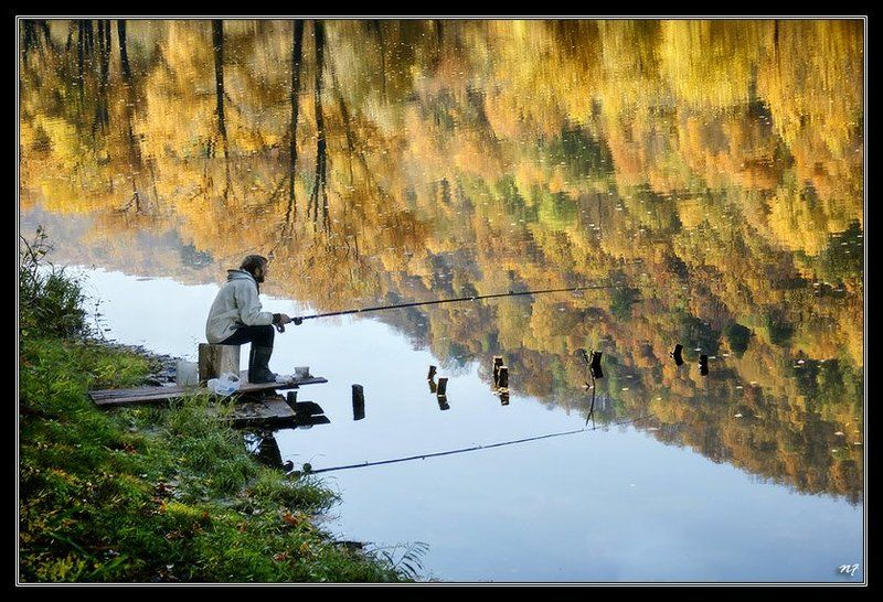 осень На краю лета...photo preview