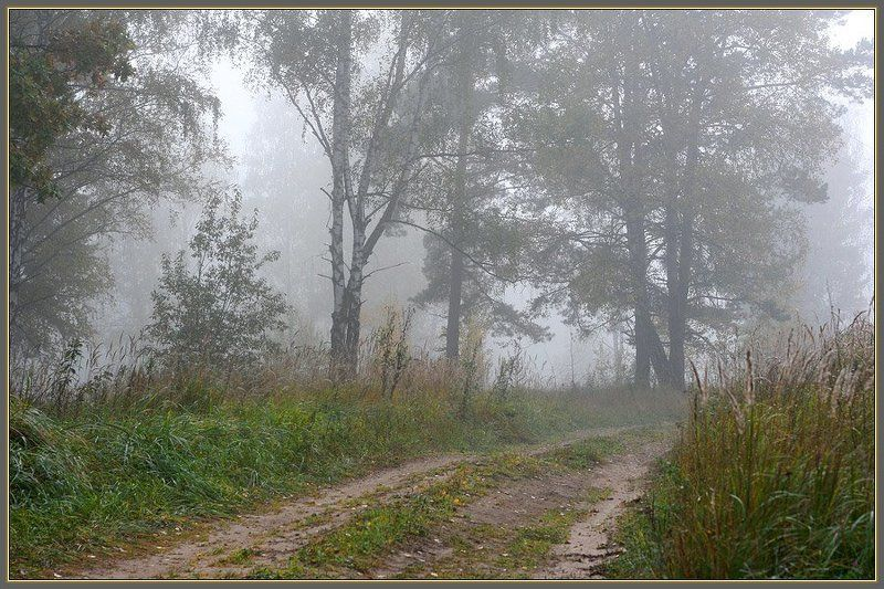 Дорожка в туманеphoto preview