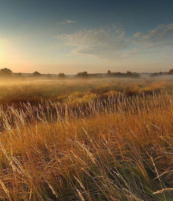 осень, утро, туман ***photo preview