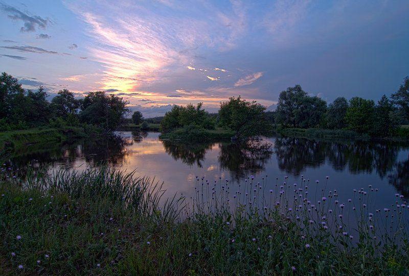 речка , закат солнца , цветы тихий вечерphoto preview