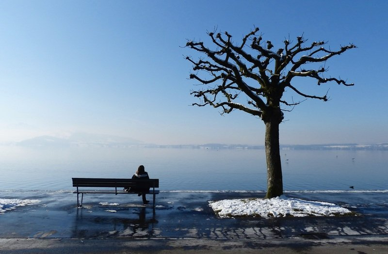 street, blue, landscape, nature, tree, woman, bench, travel, water, lake, birds, snow, solitude, city,  Однаphoto preview