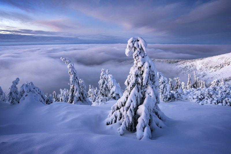 czechia, mountains, czech mountains, sonya6400, sigma, krkonoše, snow, landscape, photo preview