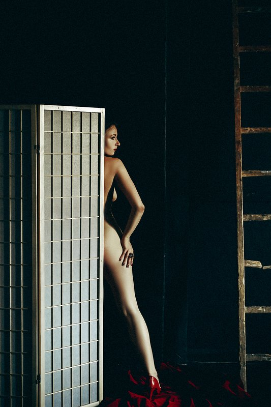 woman, portrait, nude, indoors, conceptual Step up the Stairsphoto preview