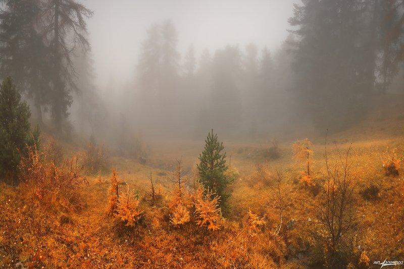 swiss Осень..photo preview
