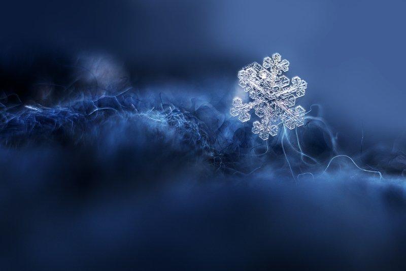 снежинка Хрустальнаяphoto preview