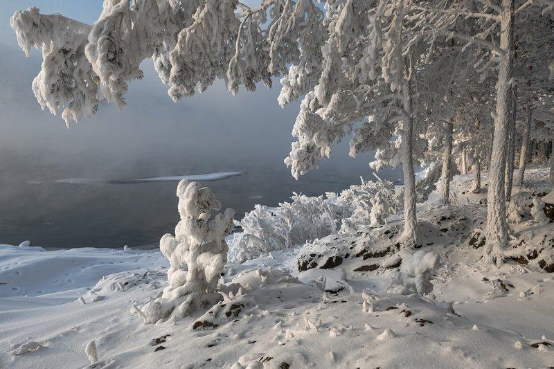 морозы, енисей, берег, изморозь. Зимнее украшение.photo preview