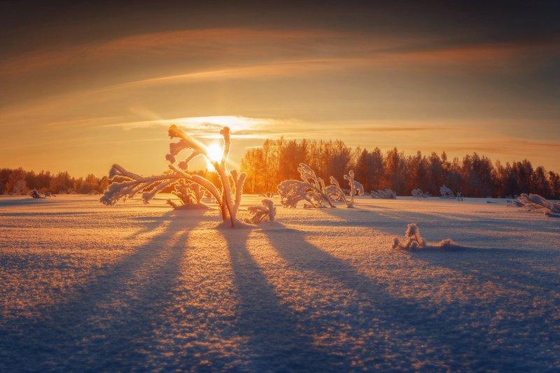 озеро, горы, лес, природа, закат, рассвет, красота, приключения, путешествие, облака Сибири рассветыphoto preview