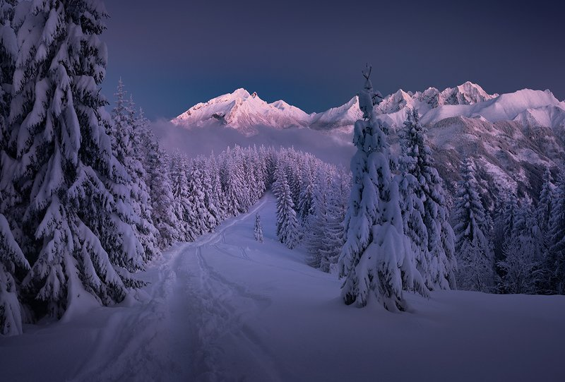 Winter in Tatra Mountainsphoto preview