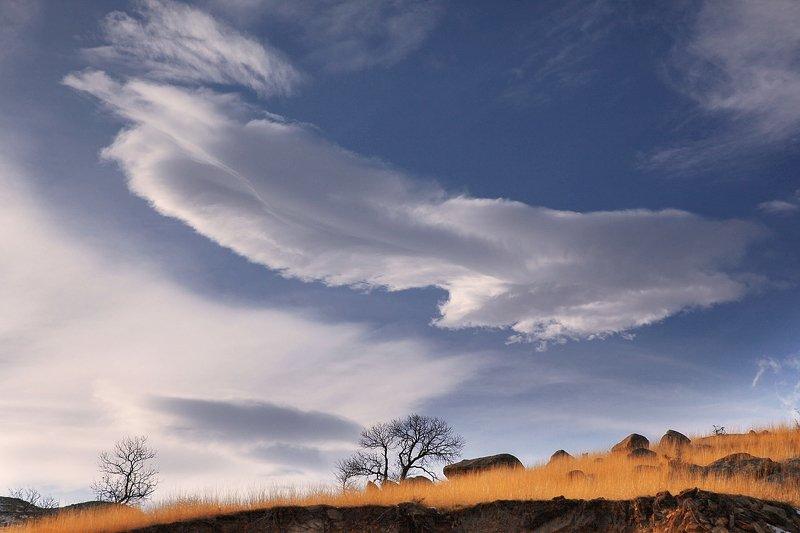 небо,облака,горы,вершины,пейзаж,небо,деревья,дагестан,природа Найдите собаку.. (Настоящую)photo preview