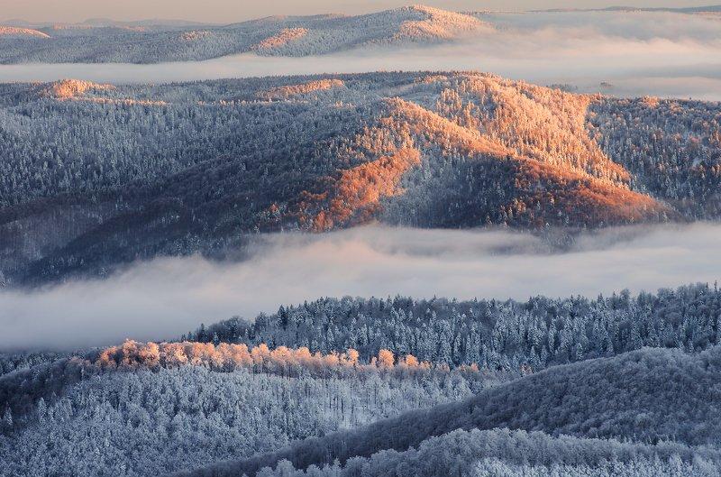 Bieszczady, winter, snow, National, Park, Poland, mountais, forest, fog Winter in Bieszczadyphoto preview