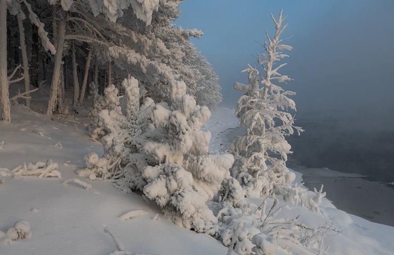 енисей, мороз, закат, берег. В вечернем свете.photo preview
