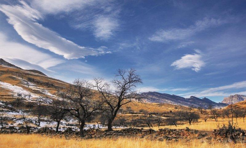 горы,вершины,пейзаж,небо,деревья,дагестан,природа photo preview