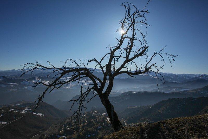 горы,вершины,пейзаж,небо,деревья,дагестан,природа ***photo preview