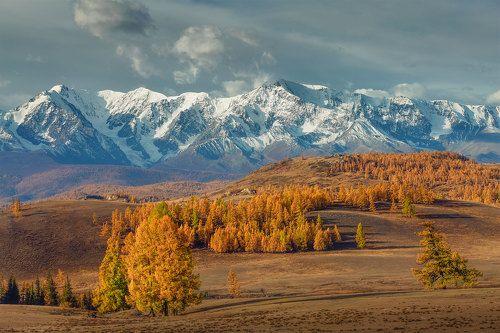 Алтайские осенние дни