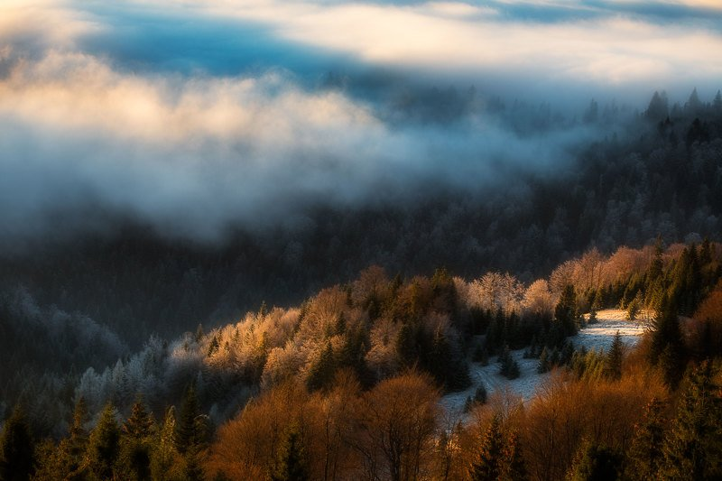 #landscape #fog #sunrise #poland #gorce When the fog is nearphoto preview